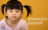 Domestic-Payroll-Logo